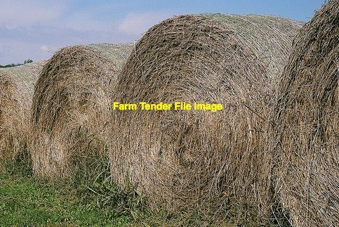 250 x Rye Grass Hay 5x4 Rolls