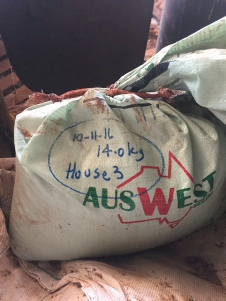 Under Auction - (A133) - Mixed Pasture Seed - 2% + GST Buyers Premium On All Lots