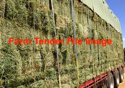 Lucerne Hay Small Bales
