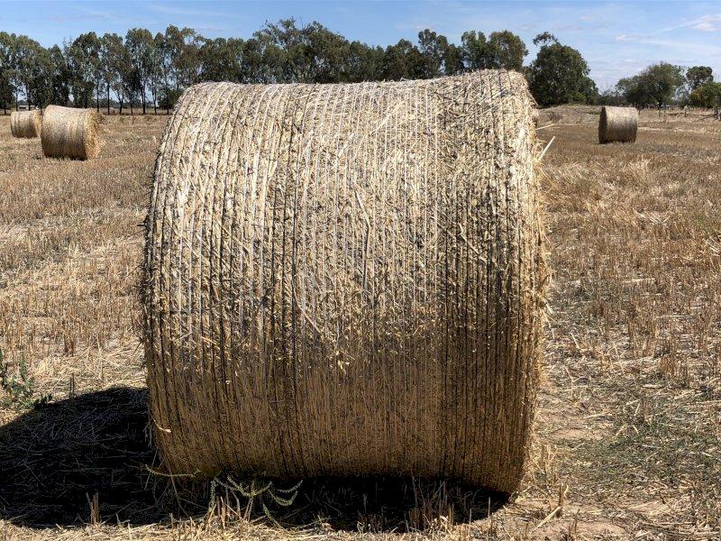 50 x Oaten Hay Rounds