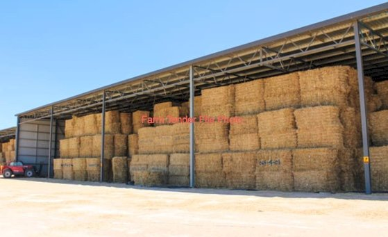 100mt Oats & Vetch Hay 8x4x3 Bales