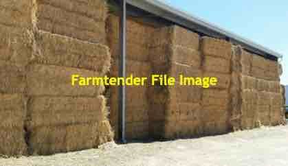 2019 Wheaten Hay 8x4x3 Bales