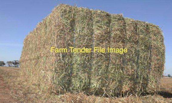 80mt Barley & Rye Hay 600kg 8x4x3 Bales