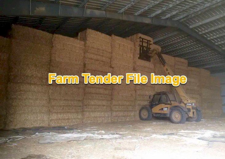 Barley Hay 650kg 8x4x3 Bales