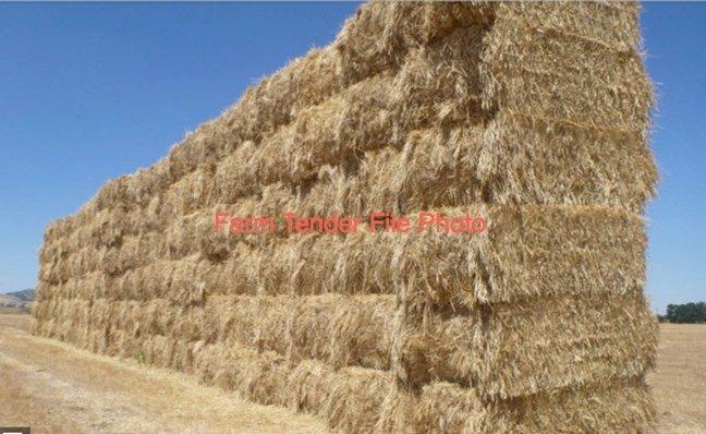 Barley Straw 480kg 8x4x3 Bales