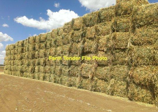 Wheaten Oaten Hay