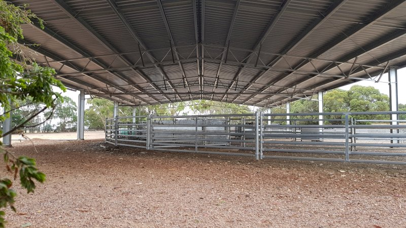 Action Steel Sheep & Cattle Yard Covers