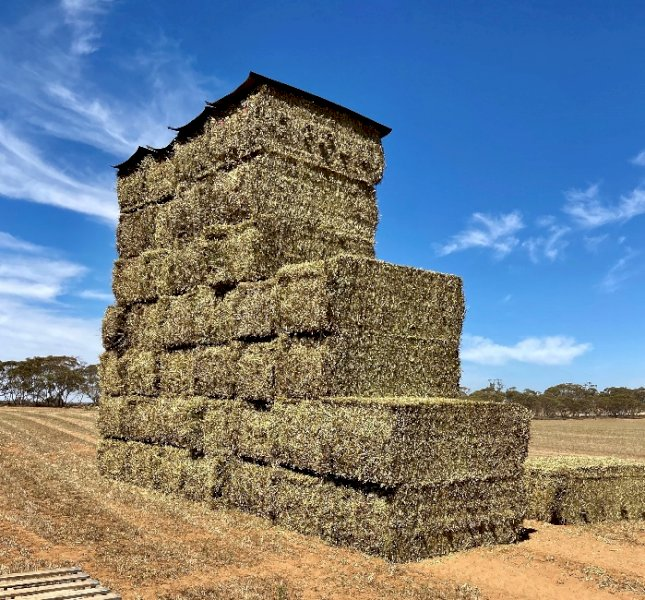 400mt Vetch/Barley Hay 600-650kg 8x4x3 Bales + Freight