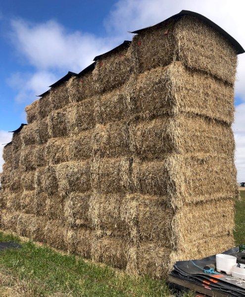 20mt Ryegrass Clover Hay 8x4x3 Bales