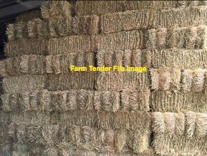 900 x Oaten Hay Small Square Bales