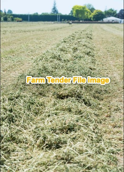 Clover Tops  8x4x3 Bales and Rolls