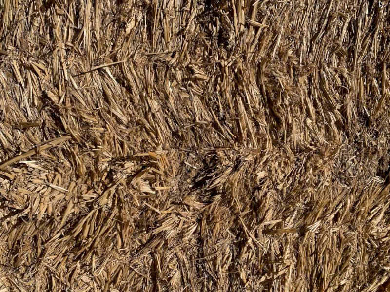 Wheaten Straw and Barley Straw For Sale