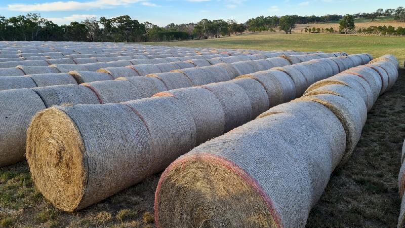 New Season's Pasture Hay Rolls