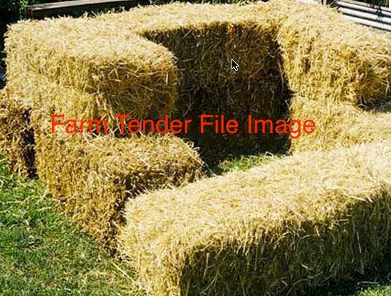 2000 x Pea Straw Small Bales