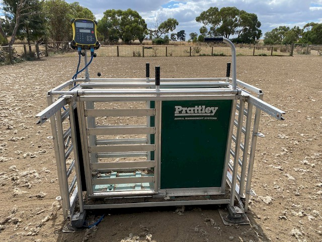 Prattley 3 Way Manual Weigh Crate with EW7 Tru-Test indicator & Load Bars.
