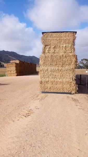 Oaten Hay High Density 8x4x3 bales