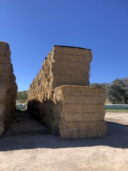 750mt Wheaten Straw 450kg + 8x4x3 Bales