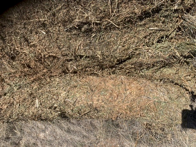 Vetch Hay Rolls - Good Colour