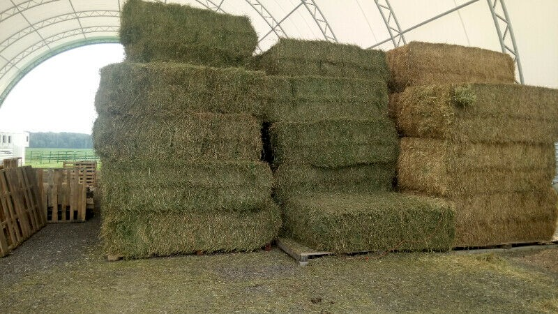 Oaten Hay for sale delivery avialable